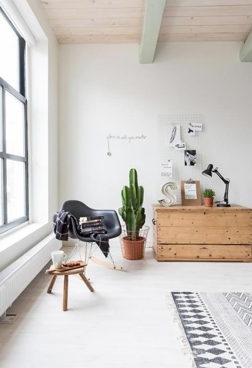 Idées pour décorer avec des plantes: un grand cactus pour le salon