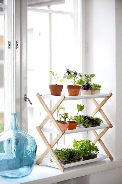 Idées pour décorer avec des plantes