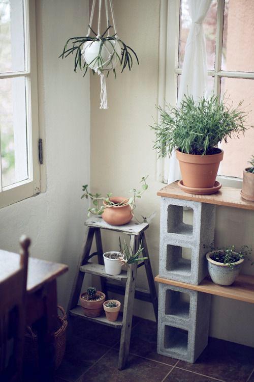 Idée pour décorer avec des pots et des plantes