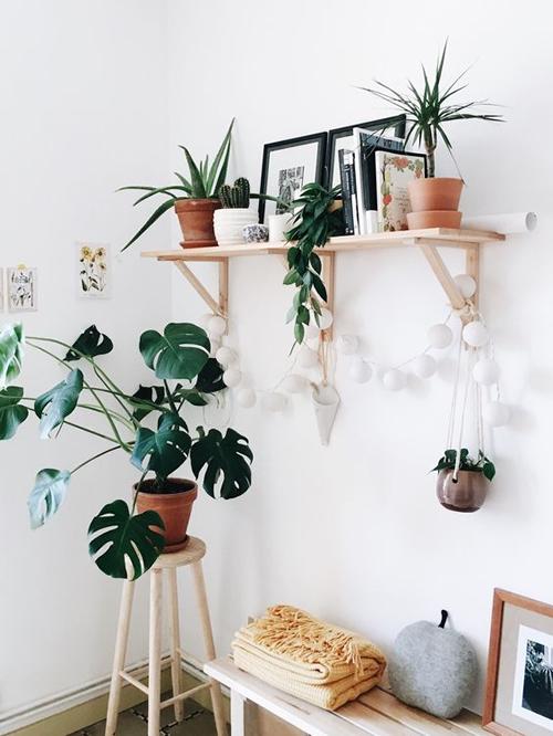idées pour mettre des pots à la maison