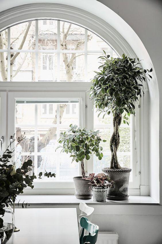 idées-décoration-fenêtres-eurorésidents