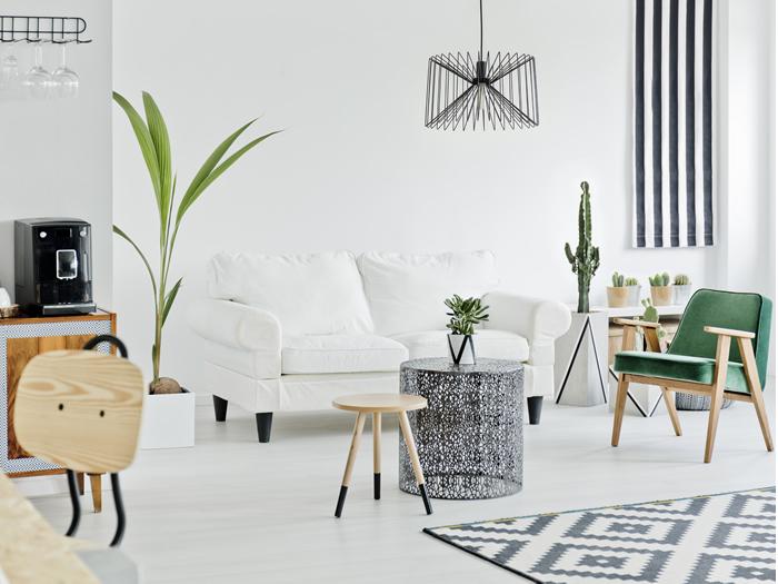 décorer-des-idées-de-plantes-d'intérieur