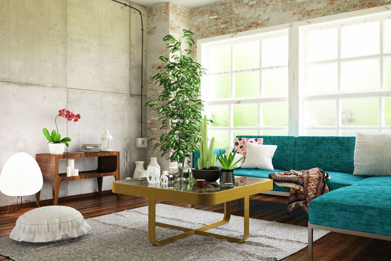 Salon avec des plantes