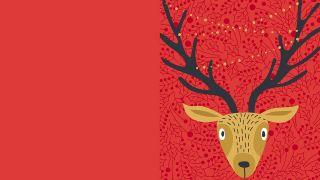 Cartes postales et cartes de Noël - 5