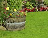 Décoration extérieure originale avec des plantes