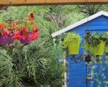 Lustre en pots de fleurs
