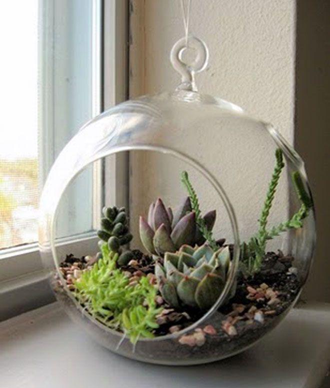 Jardins potagers pour la décoration intérieure