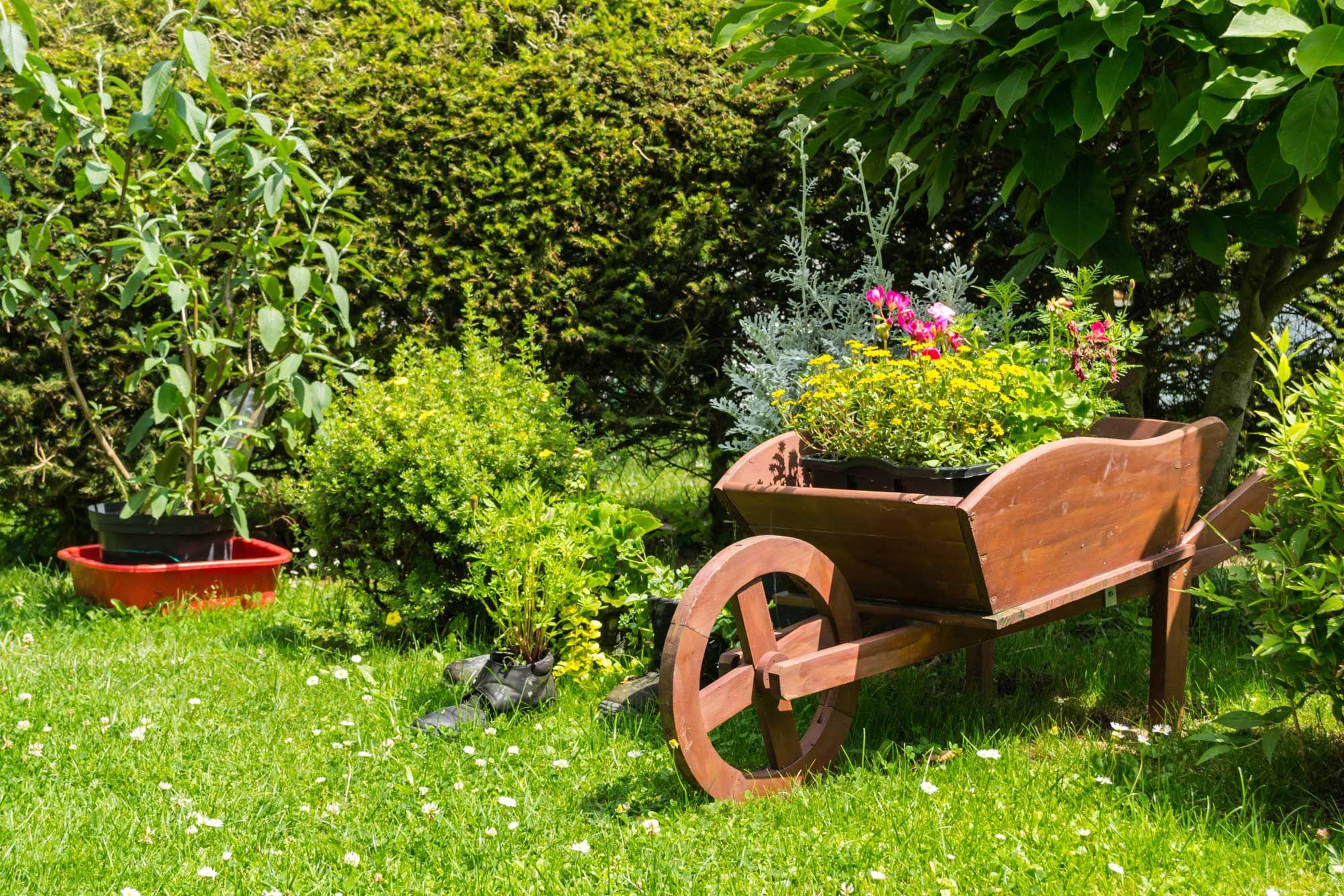 Décorez le jardin avec des brouettes avec des fleurs