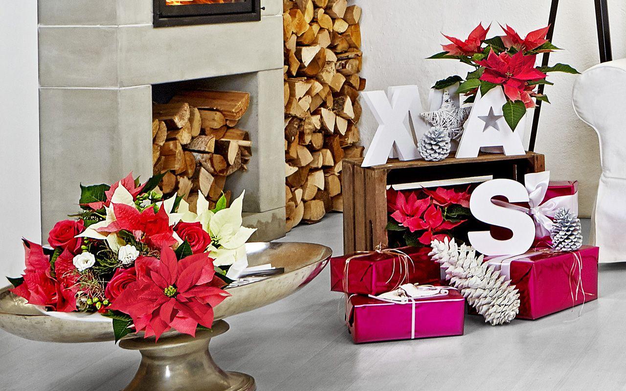 Décoration de Noël pour salon moderne