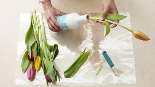 Étape par étape pour décorer des bouteilles à utiliser comme vases - Étape 3