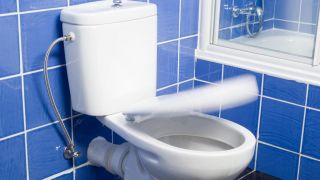 Changer le siège des toilettes