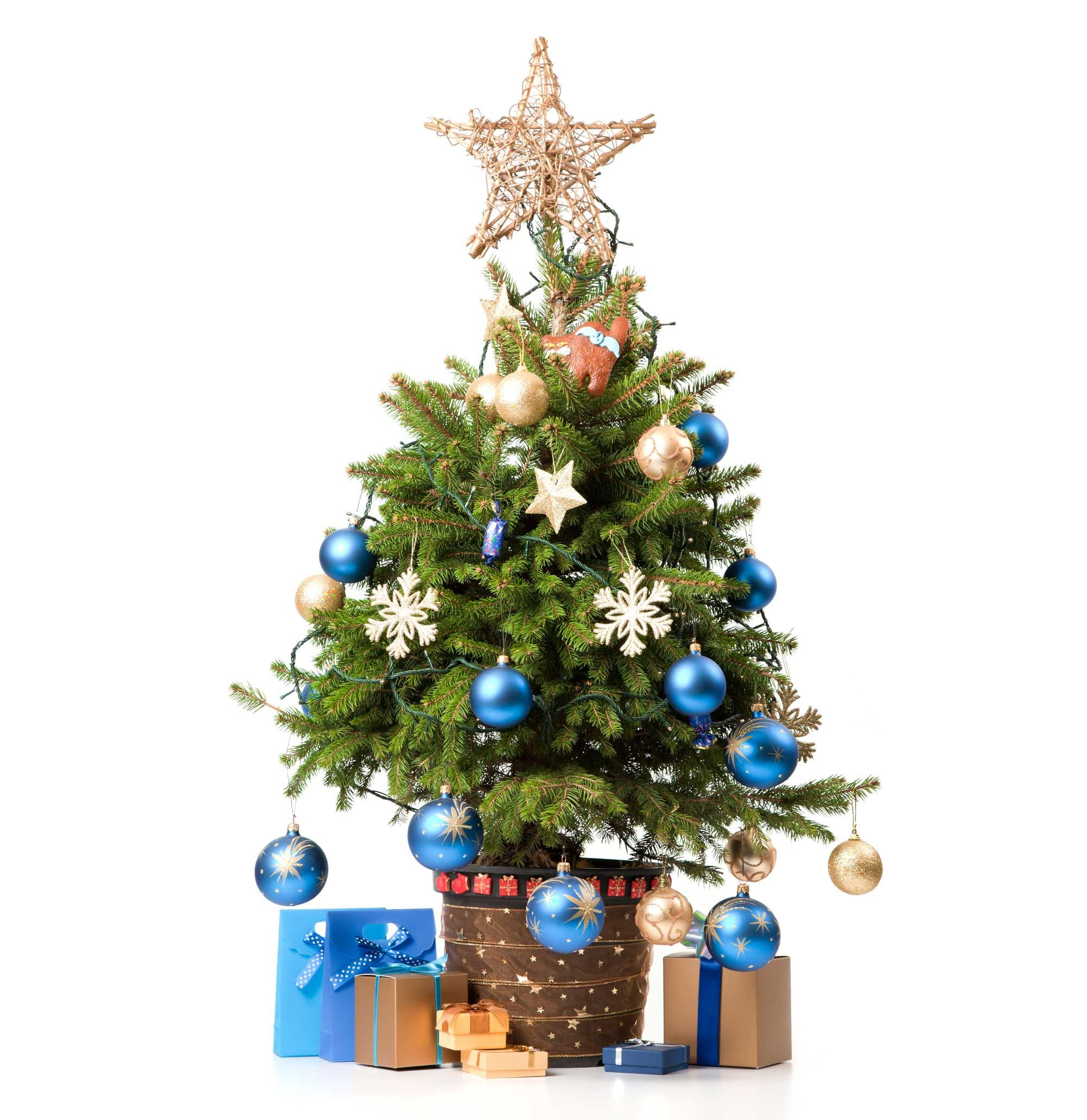 Idées pour décorer le pied du sapin de Noël