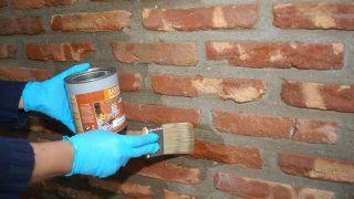 Protégez les briques des champignons et des moisissures