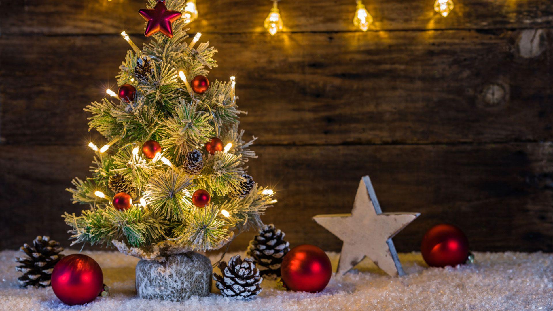 Sapin de Noël de taille mini.
