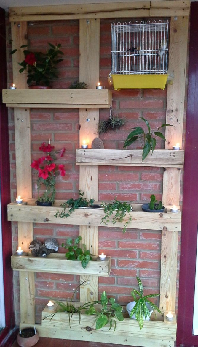 Idées pour faire un jardin vertical