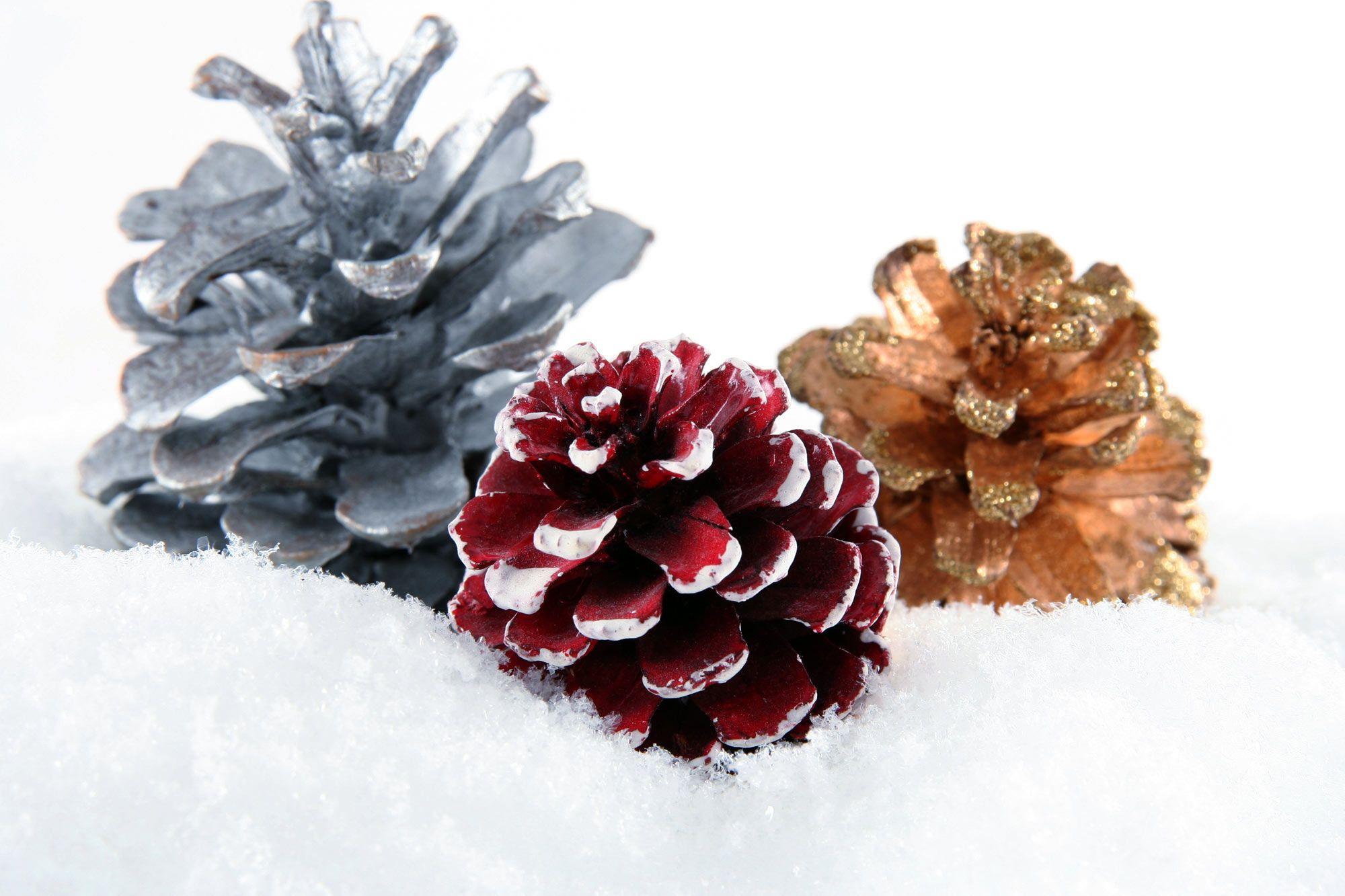 Décoration de Noël avec pommes de pin séchées