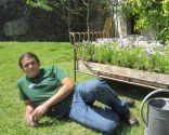 Plate-bande pour le jardin