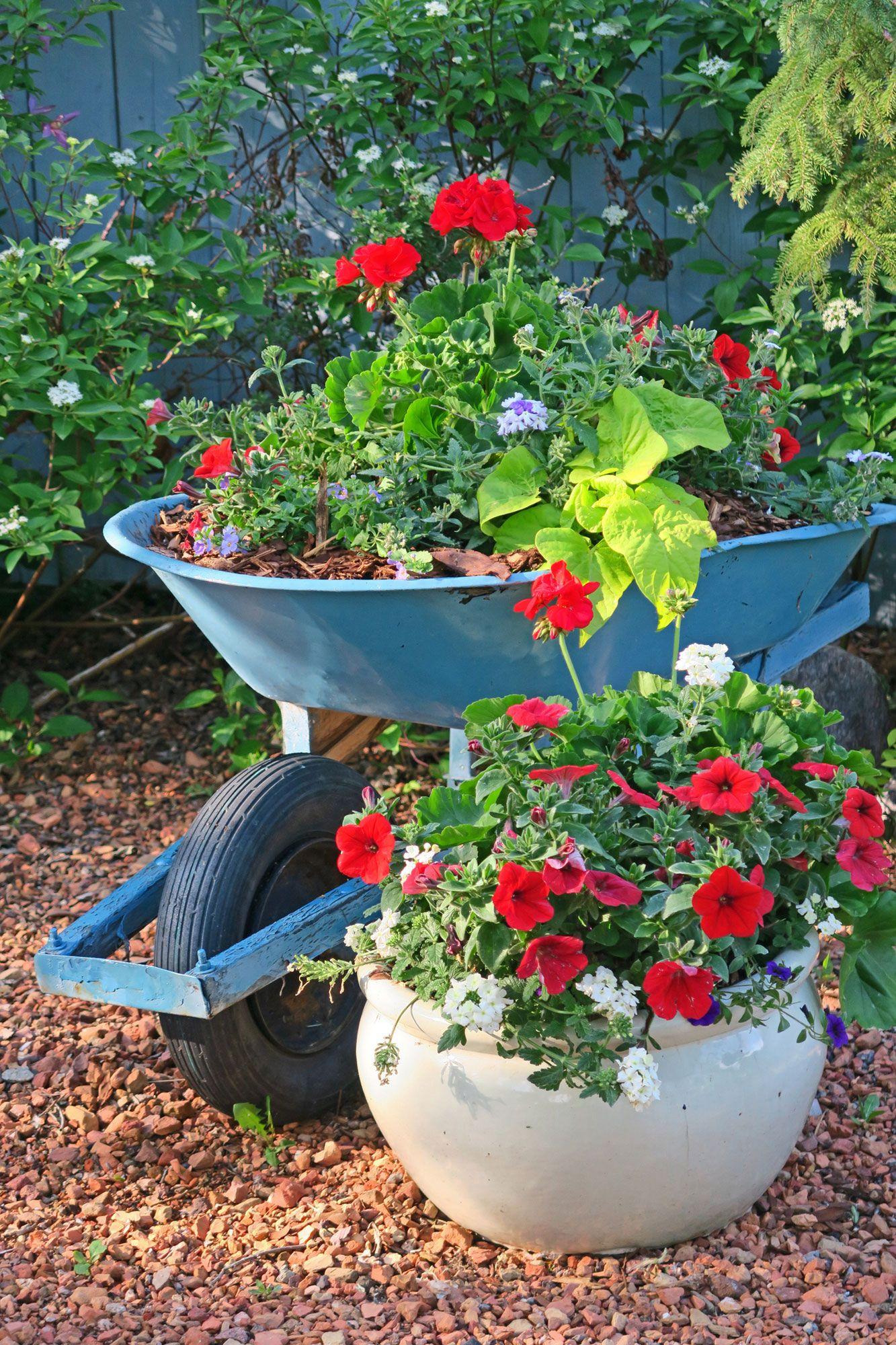 Décorer le jardin avec des brouettes avec des plantes