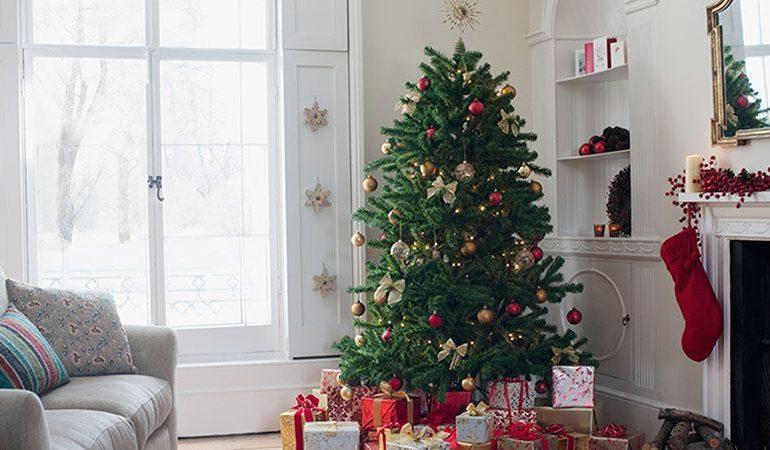 Les-meilleurs-arbres-de-Noel-pour-votre-maison.jpg