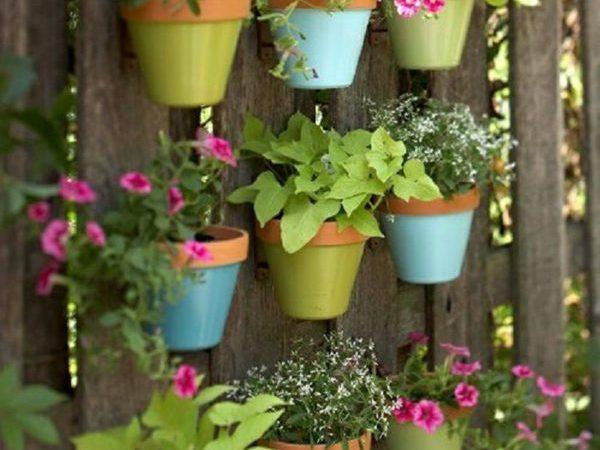 decoration-exterieure-originale-avec-des-plantes