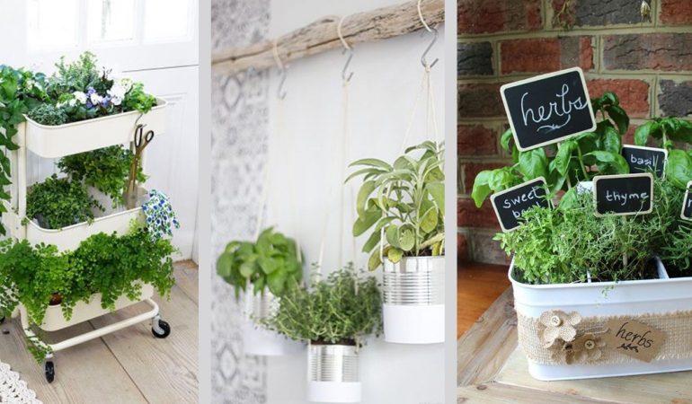 jardins-potagers-pour-la-decoration-interieure