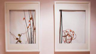 Comment faire des peintures avec des éléments naturels - Étape 6