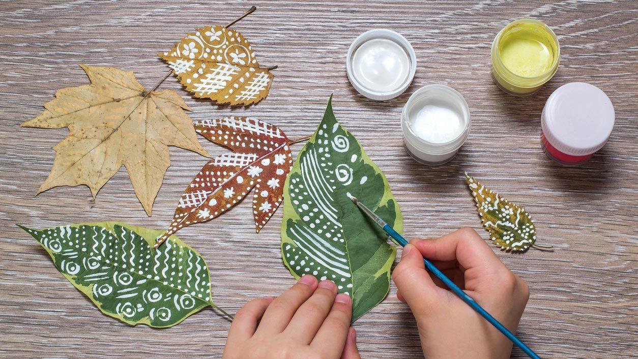 Mandalas sur feuilles sèches
